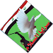 Download صفكات سرايا السلام : بدون نت 1.3.0 APK