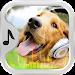 Download Animal Sounds Ringtones Free 2.2.5 APK