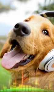 Download Animal Sounds Ringtones Free 2.1.5 APK