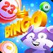Download Bingo Raccoon 1.0.17 APK