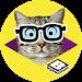 Download Boomerang Pet Photo Booth 1.1.7 APK