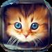 Download Cute Cats Live Wallpaper 3.6 APK