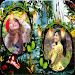 Fantasy Dual Photo Frames