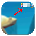 Download Guide Cheat Hungry Shark Evo 1.0 APK