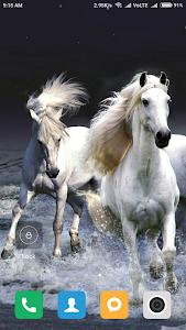 Download Horse Wallpapers 1.01 APK