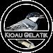 Download Kicau Gelatik 1.0 APK