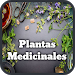 Download Medicinal Plants and Natural Medicine 1.1 APK