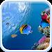 Download Ocean Fish Live Wallpaper 5.0 APK