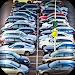 Download Parking Challenge 3D  APK