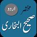 Download Sahih Bukhari - Urdu 2 APK