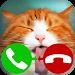 Download fake call cat 2 game 3.0 APK